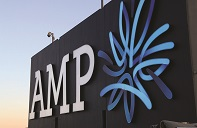 amp logo  x