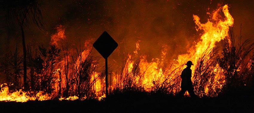bushfire ta