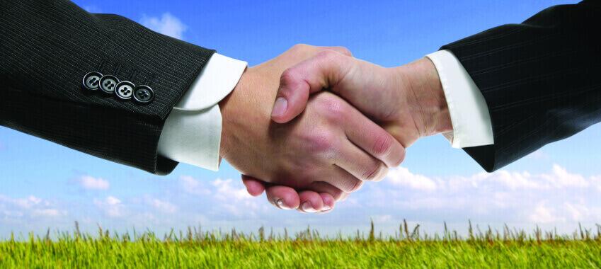handshake grass