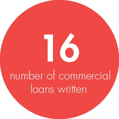 Commercial Business Writers 2016. Loan Written Stats